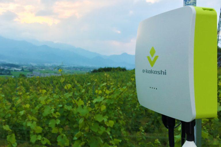 農業 IoT ソリューション「e-kakashi」サービス提供会社変更のお知らせ