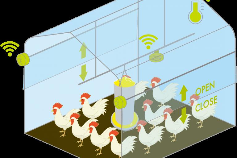 PSソリューションズ、伊藤忠飼料、CKDがスマート畜産分野で協業し、今秋から養鶏IoT(スマート養鶏)サービスの提供を開始