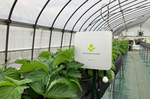 千葉市におけるスマート農業の推進を「e-kakashi」で支援 <br>~AIの活用による先進的な農業スタイルを提供~